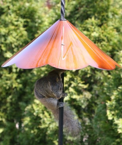 pole-mounted squirrel baffle that works