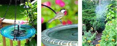 Solar Bird Baths and other water features