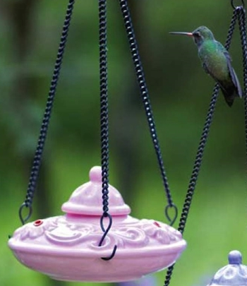 Ana Pink Hummingbird Feeder looks fab among purple and pink flowers