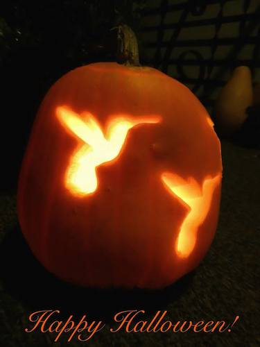 Hummingbird Theme Pumpkin Carving