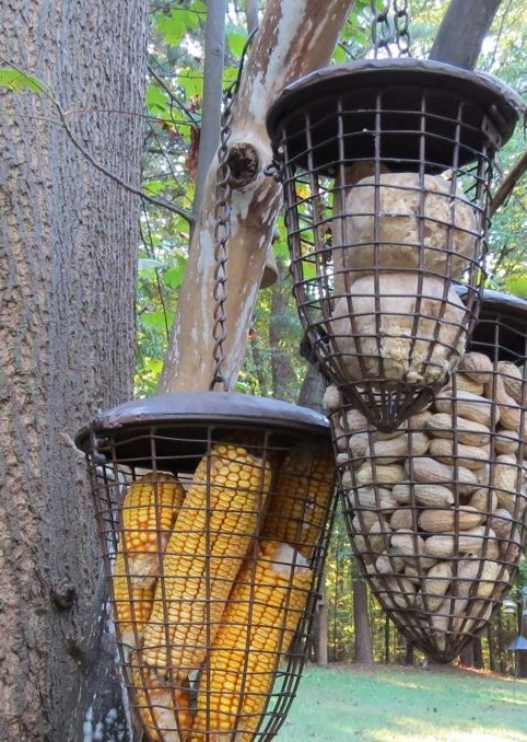 Whole Peanut Bird Feeder Basket Set