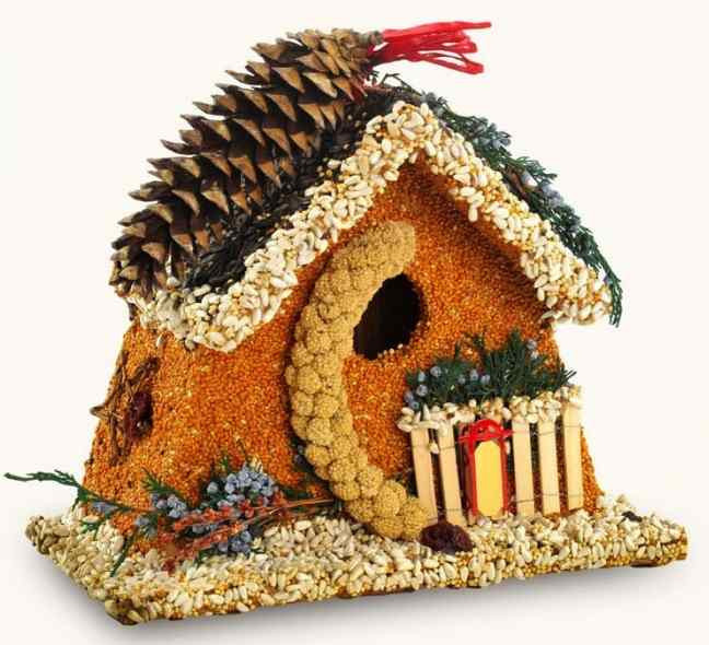 Bed & Breakfast Edible Birdhouse