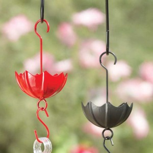 Use an ant moat to keep pests off of hummingbird feeders
