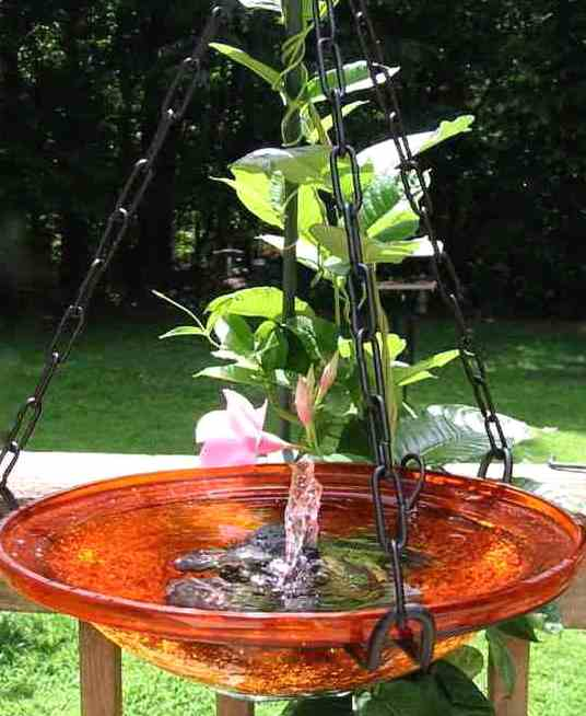 solar hanging bird-bath