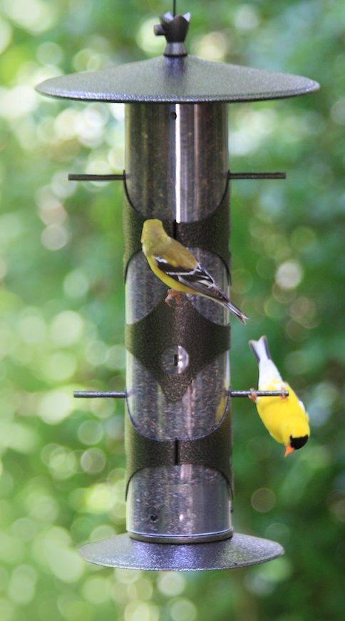 upside down finch feeder