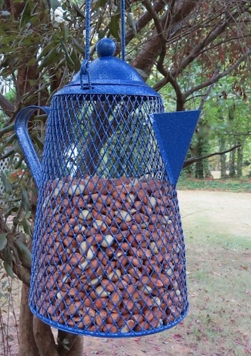 Peant Bird Feeder for Shelled Peanuts
