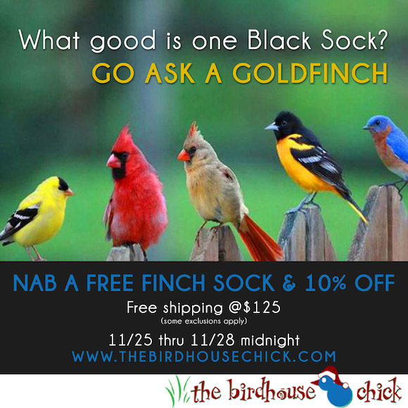 Free Nyjer Feeder Sock for Goldfinches