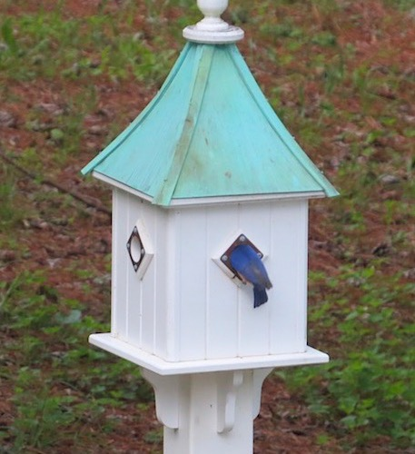 Older Dovecote birdhouse with patina copper roof