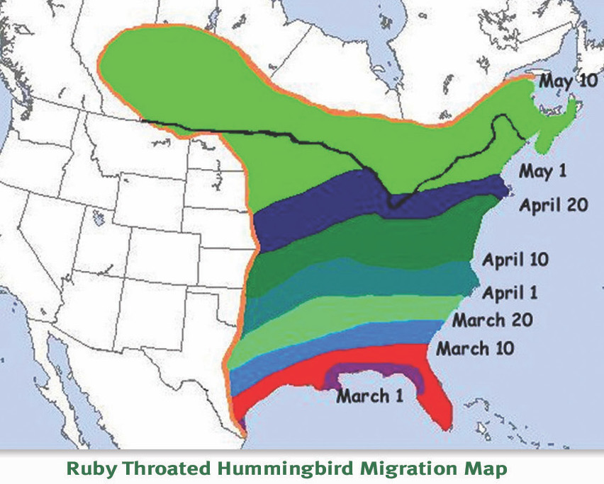 Ruby Throated Migration Map- General Zones