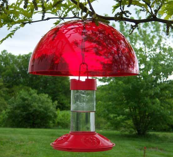 Dr. JB's Bee-Proof Hummingbird Feeder