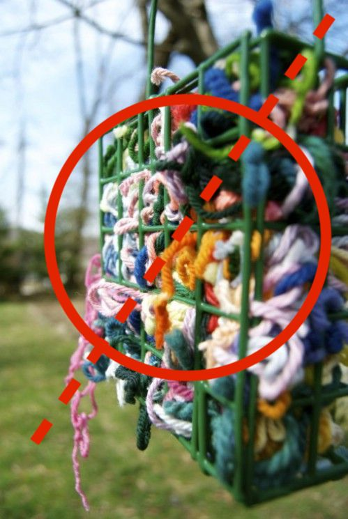 Dyed nest materials can be dangerous whether birds use a birdhouse or not